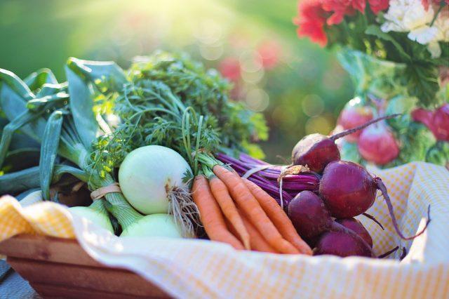 Rendez-vous conso | De bons réflexes en matière d'alimentation
