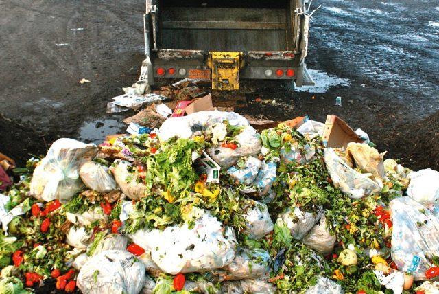 Jeux de sensibilisation au gaspillage alimentaire