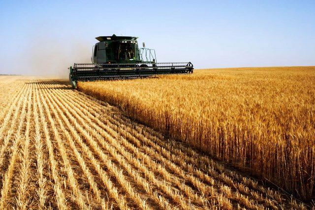 Conférence-débat : agriculture & alimentation