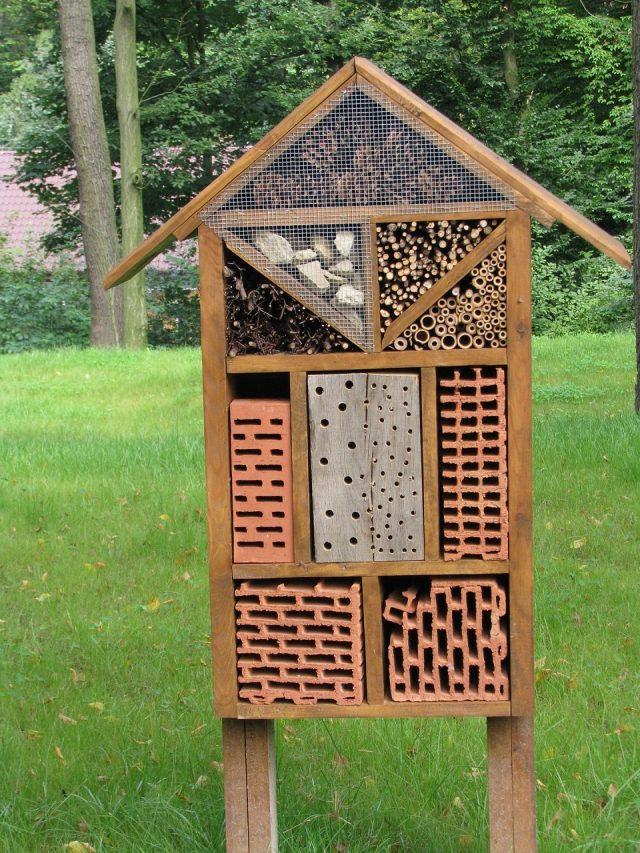 Construire un abri pour les insectes de votre jardin