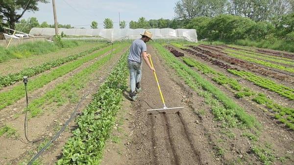 Don militant : vos centimes aident des agriculteurs