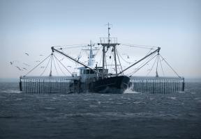 Biocoop engagé contre la pêche électrique