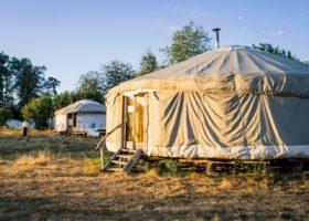 Écotourisme : vacances vertes et écologiques