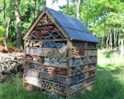 Bricolage : construire un hôtel à insectes