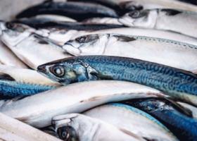 Pourquoi y a-t-il des problèmes d'approvisionnement au rayon poissonnerie ?