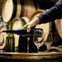 Dégustations gratuites de nos vins et fromages d'automne