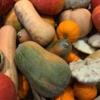 En octobre, profitons d'un automne doux et savoureux